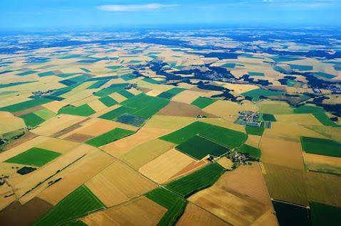 Agricoltura - Foto di Konevi da Pixabay