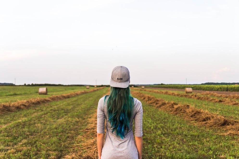 ISMEA: via al terzo bando della Banca delle terre agricole
