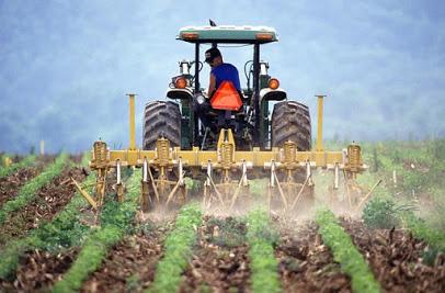 Dl rilancio agricoltura