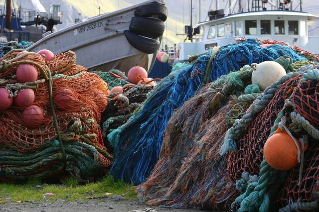 Pesca - Photo credit: Foto di David Mark da Pixabay