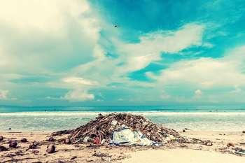 Chi inquina paga - Foto di Artem Beliaikin da Pexels